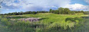 Landscape-Option-1-(MCCD)